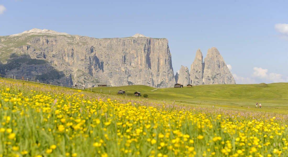 Escursionismo sull'Alpe di Siusi: godetevi il panorama incomparabile